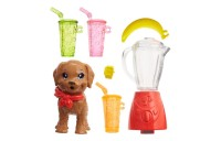 Barbie Sisters Stacie Doll and Smoothie Accessory Set Deal