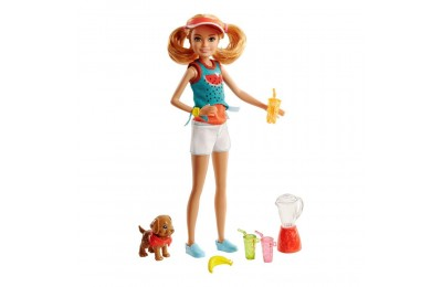 Black Friday 2020 Barbie Sisters Stacie Doll and Smoothie Accessory Set Deal