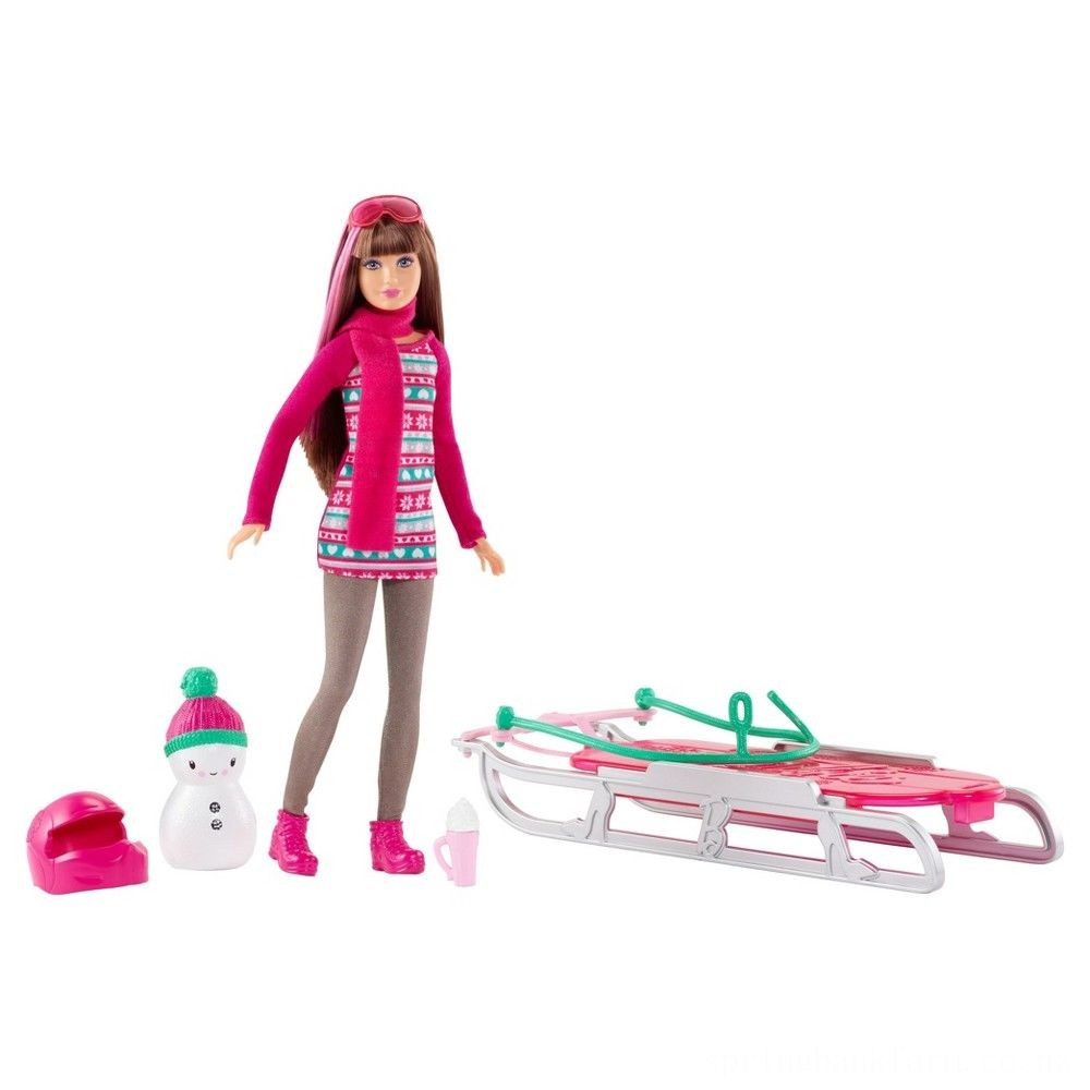 Barbie Sisters' Sledding Fun and Doll Playset Deal